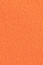 SS212001_1866_4-FIRENZE-SURF-MINI-SHORT